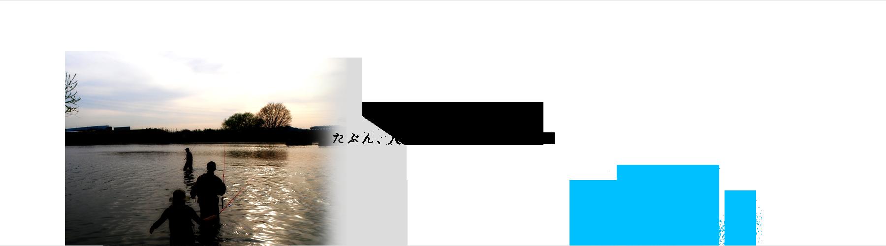 bg02_over